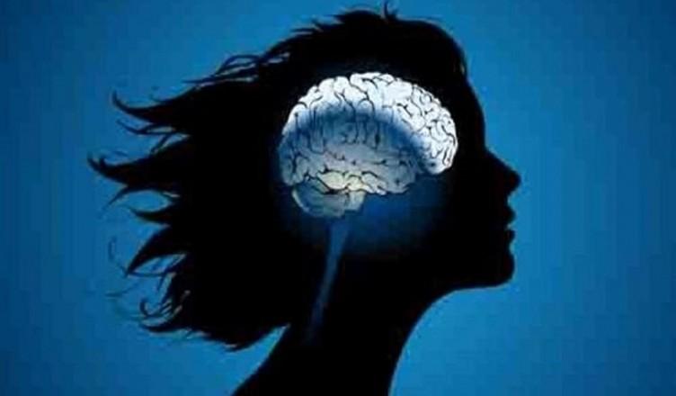 cervello donne