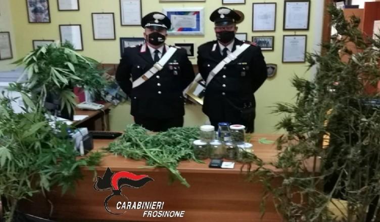 Compagnia CC di Frosinone, foto