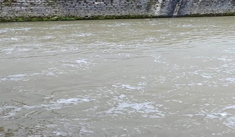 Schiuma fiume Liri